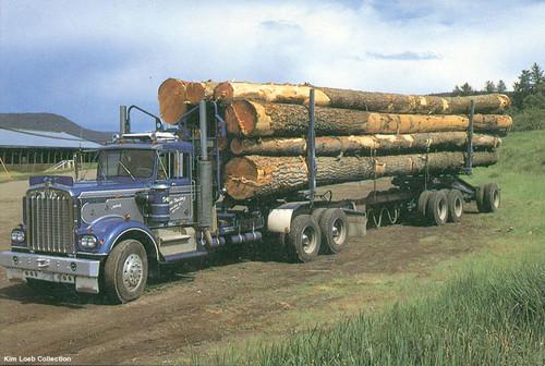 Alabama Legislation Proposed For Logging Trucks